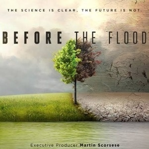 Movie Screening - Before the Flood