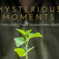 Library Partners Press presents....MYSTERIOUS MOMENTS Book Launch