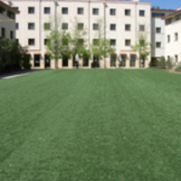 Telluride-Vail Quad / Summit Village Turf (TVQ)