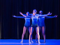 DanceWorks XIV