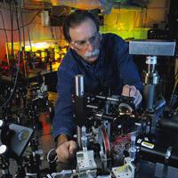 Quantum Computers and Schrödinger's Cat