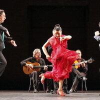 Secrest Series: Noche Flamenca