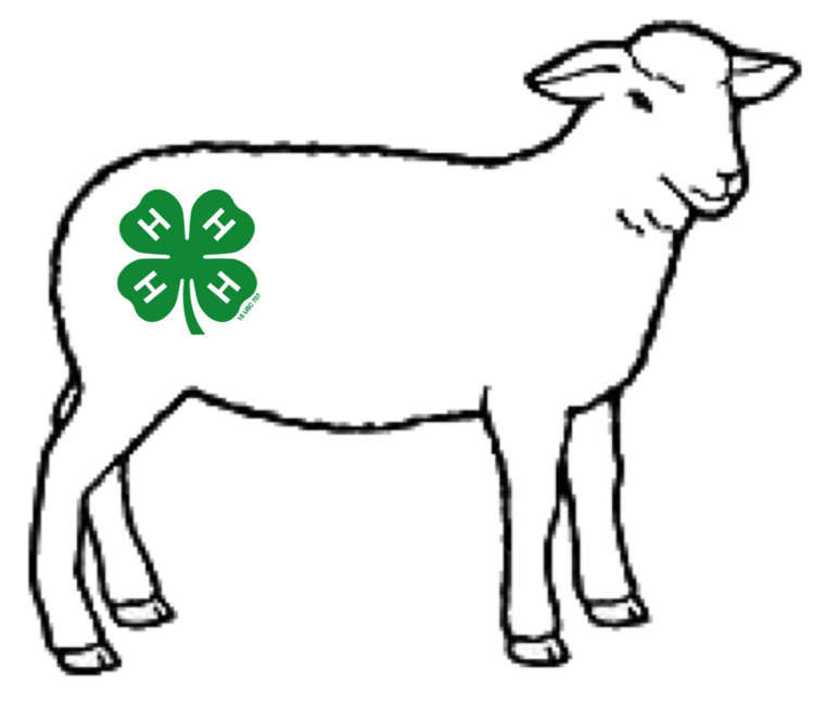 Laurens County 4-H Katahdin Lamb Project Registration