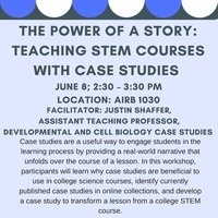 The Power of a Story: Teaching STEM Courses with Case Studies**