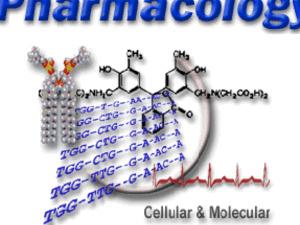 Pharmacology Postdoctoral Workshop - John Reho, Ph.D.