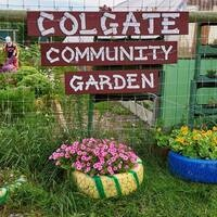 Colgate Community Garden Work Party