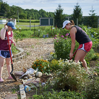 Community Garden Open Volunteer Hours
