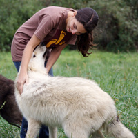 Wolf Talk: Exploring the Human-Canine Bond