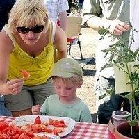 10th Annual Capay Tomato Festival