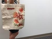 Shopping Bag Giveaway