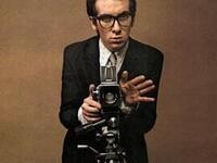 My Aim is True: A Tribute to the Music of Elvis Costello