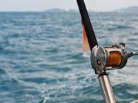 Gulf Getaway Fishing Trip
