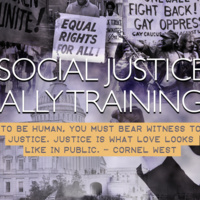 Social Justice Ally Training (Train-the-trainer)