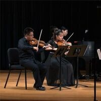 Chamber Music Competition - Master Players Festival