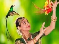 Jayanthi Raman's Dance of the Hummingbirds