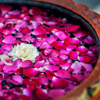 Ayurveda: Health for Body and Mind