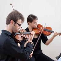 Strings Showcase