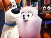 Outdoor Screening: Secret Life of Pets