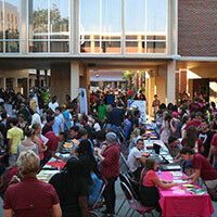 Involvement Fair & Seminole Showcase
