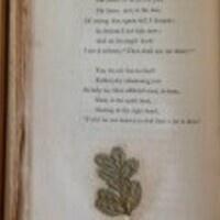"Andrew Stauffer, ""Garden of Verses: Poems, Flowers, and Nineteenth-Century Readers"""