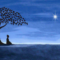 Mindfulness Based Self-Compassion Course: Introductory Session