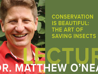 Lecture: Dr. Matthew O'Neal