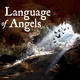 Harper Ensemble Theatre Company Presents: Language of Angels
