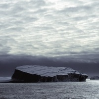 Antarctic Ecosystem Research Workshop Following Ice Shelf Collapse and Iceberg Calving Events