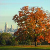 Tree Canopy Conference: Green Infrastructure in the Urbanized Environment