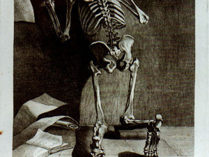 Elizabeth Yale: Bring out Your Dead (Papers)! Early Modern Medical  Practitioners as Archivists and Collectors