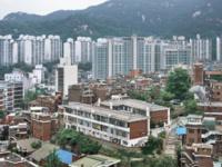 Eunjong Lee: Seoul Physiognomy