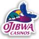 Ojibwa Casino-Information Session