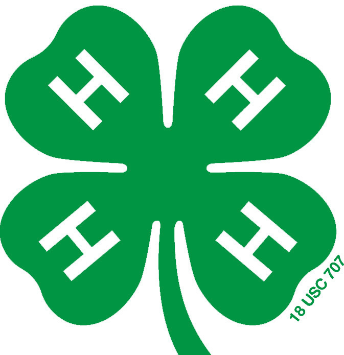 National 4-H Volunteer e-Forum - Laurens County