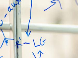 "Samantha Nania: ""Analysis of Molecular Fluids at the Solid-Liquid Interface"""