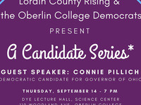 Connie Pillich: Democratic candidate for governor