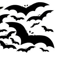 The Bat Lab