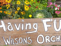 Omega Chi Fall Event: Wilson's Apple Orchard