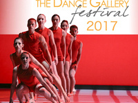 The Dance Gallery Festival