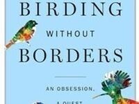 Birding Without Borders: An Epic World Big Year