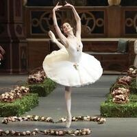 Bolshoi Ballet Broadcast: Le Corsaire - The Modlin Center for the Arts