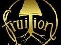 New Year's Eve with Fruition
