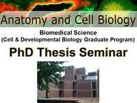 Cell and Developmental Biology PhD Thesis Seminar