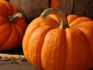 Pumpkins and Protection