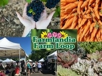 Celebrate October on Farmlandia Farm Loop