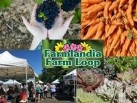 Celebrate October on Farmlandia Farm Loop