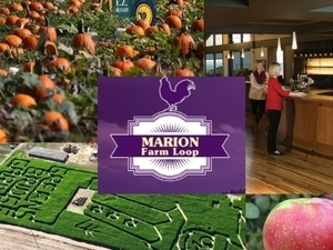 Eat, Drink, Laugh Local on Marion Farm Loop