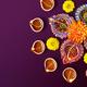 Cardinal & Gold: Diwali