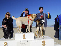 The Surfsand Resort's Annual Dog Show