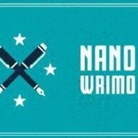 NanoWriMo Write In