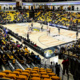 Towson Men's Basketball vs Northeastern University